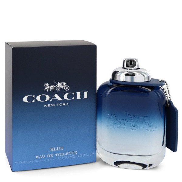 Man blue -  eau de toilette spray 100 ml